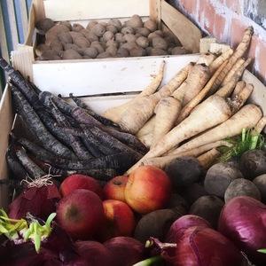 Gemüse Raupe Immersatt 2